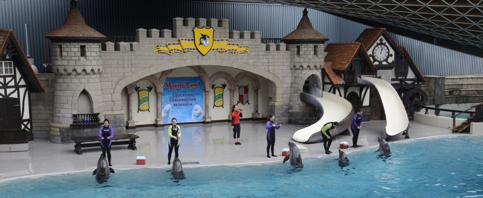 Attractions - Marineland