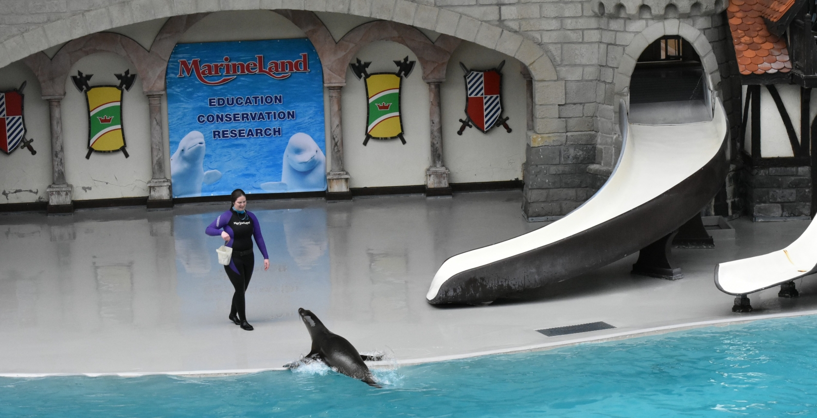 Marineland's Educational Presentation - Offered Daily at the King Waldorf Stadium - Marineland